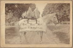 "Rare CIVIL WAR BATTLE HORSE Cabinet Card COLONEL Lt NJ Hall GETTYSBURG Bull Run//COLONEL, was about six years old at the breaking out of the Rebellion,  owned by Lieut. N.J. Hall,  4th U.S. Artillery. ""Old Colonel"" must have heard the first gun that was fired over our National Flag."