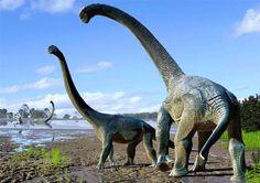 Savannasaurus elliottorum: New Dinosaur Discovered in Australia  #AustralianAge #AustralianAgeofDinosaurs #Australovenator #Austrosaurus #BenjaminKear #CentralWestQueensland #Cretaceous #DavidElliott #Diamantinasaurus #Environment #Mesozoic #Sauropoda #StatesandterritoriesofAustralia #StephenPoropat #Titanosaurs #TravisR.Tischler #UppsalaUniversityinSweden #WintonFormation #Wintonotitan