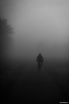 Into the mist by Frank Schillinger. S)