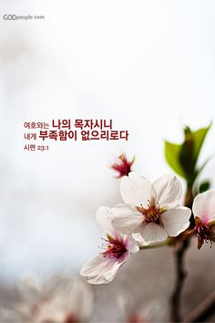 Bible Words, Bible Quotes, Bible Verses, Korean Language Learning, Word Of God, Faith, Christian, Learning Resources, Calligraphy