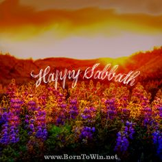Born to Win - Making Life Work with Ronald L. Sabbath Rest, Sabbath Day, Happy Sabbath Images, Sabbath Quotes, Jesus Son Of God, Thought For Today, Get Closer To God, Gods Not Dead, Blessed Quotes