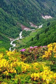 Trabzonda ilkbahar