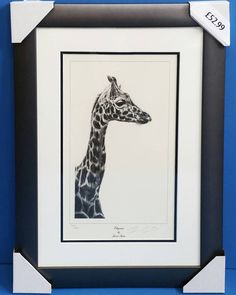 Limited edition prints by Jamie Boots available framed in our Kettering shop now! Other designs available #jamieboots #frames #photoframe #painting #oilpainting #canvas #watercolour #crossstitch #photography #printing #posters #artwork #art #fineart #pictureframing #pictureframers #pictureframes #framing #framers #shoplocal #kettering #ezeframe #zanart #bedford