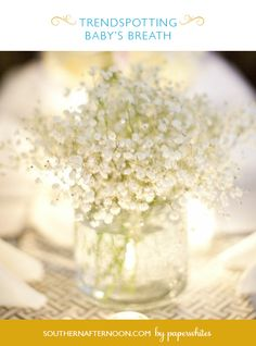 Baby's Breath is totally new