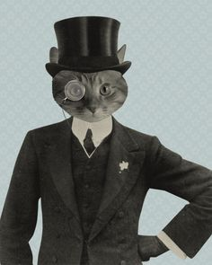 Mr. Fancy Cat in Suit by Kevin Lucius.