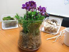Terrarium Diy, Orchid Terrarium, Orchid Planters, Orchid Pot, Succulent Planters, Terrariums, Succulent Containers, Fall Planters, Container Flowers