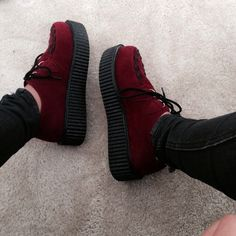 My creepers came in today