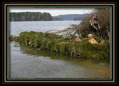 Camoflauge duck boat - gator trax - best