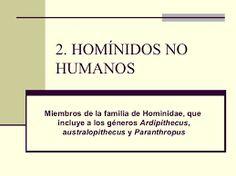 2.- HOMÍNIDOS NO HUMANOS