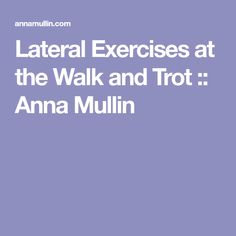 Lateral Exercises at the Walk and Trot :: Anna Mullin
