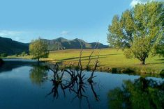 Royal Coachman - Clarens Accommodation. Built In Braai, Bed Next, Fly Fishing Tackle, Outside Furniture, Free State, Brown Trout, Loft Room, Open Fireplace