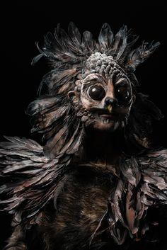 S7E5 - Spotlight Challenge: Animal Attraction (tawne owl/coatimundi) - Damien (win)