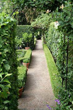 Hemlängtan: Trädgårdstoppen