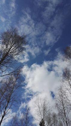 Blogi  OMAISAPU.fi      : Huhtikuun huumaavia kuvia