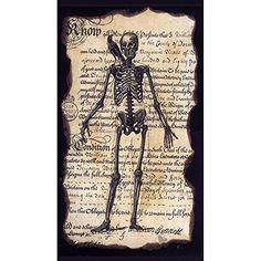 Enchanted Halloween Skeleton Paper Guest Towels Gifted Living http://www.amazon.com/dp/B00LI7JKFK/ref=cm_sw_r_pi_dp_.BsRwb110S36R