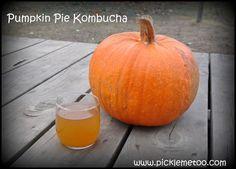 Pumpkin Pie Kombucha