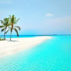 The beautiful Maldives!