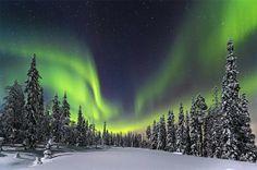 森の灯り >【Traveler Photo Contest 2014 - National Geographic】> フィランド、ピュハ・ルオスト国立公園の森にかかるオーロラ(写真と文章:ニコラス・ロンメル)