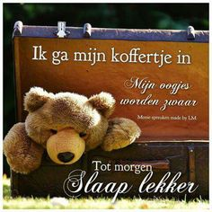 Slaap lekker Good Night, Good Morning, Friends Forever, Sweet Dreams, Compliments, Teddy Bear, Toys, Cute, Baby