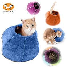 United Pets Kitty Cat Cozy Cave & Bed (Purple) - http://www.bunnybits.org/united-pets-kitty-cat-cozy-cave-bed-purple/