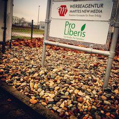 Die neue Außenbeschilderung unseres Kunden Pro-Liberis