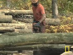 Go Wood: Sustainable Forestry, Bioenergy, and the Carbon Cycle - Misunderstood and Misrepresented Sustainable Forestry, Sustainable Practices, Biomass Energy, Carbon Cycle, National Geographic, Sustainability, Environment, Wood, Woodwind Instrument