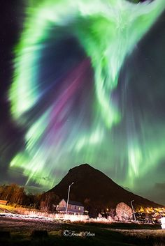 Brilliant aurora burst taken by Frank Olsen on October 2014 from Sigerfjord, Norway Beautiful Sky, Beautiful Images, Alaskan Northern Lights, Stars At Night, Pretty Lights, World Best Photos, Milky Way, Nature Pictures, Norway