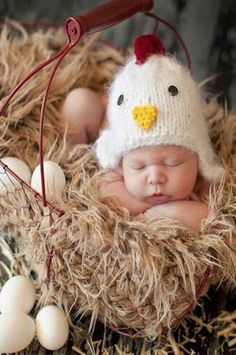 CCA98 Chicken Knit Hat Baby Prop - Backdrop Outlet