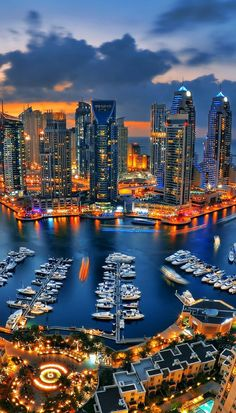 Discover the best places to visit in Dubai! Including some of the most beautiful places in Dubai like the Dubai Miracle Gardens or going on a desert safari ride. Best Places To Travel, Vacation Places, Best Cities, Best Vacations, Cool Places To Visit, Places To Go, Dubai City, In Dubai, Visit Dubai