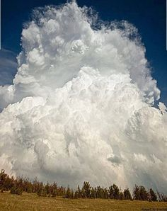 cumulocongestus cloud -its the stage before cumulonimbus where the cloud looks very fluffy and white still.