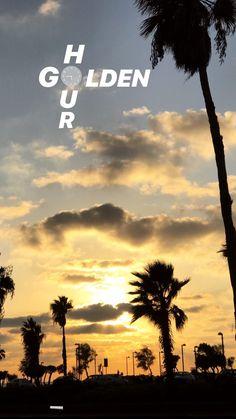 My story idea, Tel Aviv Tel Aviv, Story Ideas, Golden Hour, Palm Trees, Celestial, Sunset, Movie Posters, Outdoor, Inspiration