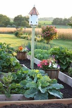 Have you been dreaming of a potager kitchen garden? Learn such a potager garden is, how to design your home garden with some more sample home kitchen potager garden design Potager Garden, Veg Garden, Garden Types, Garden Cottage, Edible Garden, Garden Beds, Garden Landscaping, Vegetable Gardening, Easy Garden