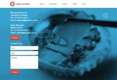 Web Design, UX, UI, Abalone Website, Blue, Corporate Web Design, Abalone Farming, Sea food, Contact Page