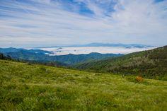 Meanderthals   Appalachian Trail on Grassy Ridge, Roan Highlands