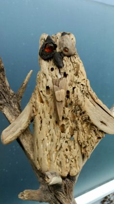 driftwood, owl with eyes of amber. Made by     EVAS