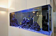 aquarium cabinet choices - Google Search