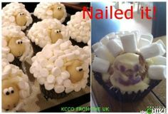 I don't care about the second picture. They're Shawn the sheep cupcakes. Now I want to see someone do a Gromit or a Wallace with teeth! Pinterest Fails, Pinterest Recipes, Pinterest Food, Pinterest Projects, Pinterest Craft, Can't Stop Laughing, Laughing So Hard, Sheep Cupcakes, Lamb Cupcakes