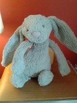 FOUND in TEIGNMOUTH, DEVON Hi, I found this rabbit today in Buckeridge Road, Teignmouth - it looks like it had been there a little while - it was in a ditch covered in mud, but he's come up like new in the washing machine! Let me know if you recognise it. Contact: https://www.facebook.com/amanda.j.veal