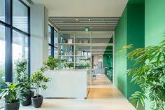 Karuizawa, Consulting Firms, Kyoto, Branding, Brand Management, Identity Branding