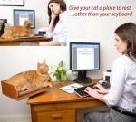 Give Your Cat a Place ... Near Your Desk