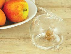 Glazen fruitvliegjesval Appel (niet giftig)