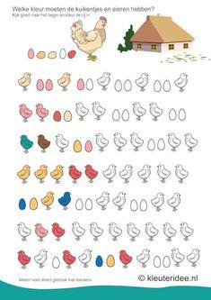 Welke kleur moeten de kuikentjes en eieren hebben, kijk goed naar het begin van de rij , kleuteridee.nl , free printable.
