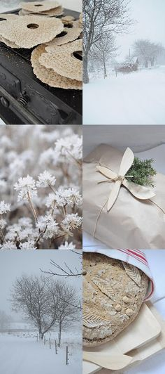 snow and plants and paper and baking from the blog Gnistrande Snö.