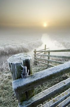 Image result for Frosty marks on wall and fence