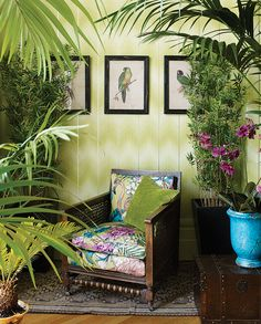 DANZON Wallpaper and FLAMINGO CLUB fabric from the Cubana Collection by Matthew Williamson for Osborne & Little