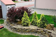 Landscape Design, Garden Design, Stone Plant, Asian Garden, Outdoor Living, Outdoor Decor, Front Yard Landscaping, Flower Beds, Lawn And Garden