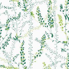 Scandinavian Designers II -tapetit nostavat seinille 1940-60-lukujen luontokuosit Mukana mallistossa suomalaissyntyisen Viola Gråstenin raikkaat lehtikuviot Boråstapeter julkaisee tapettimalliston, joka nostaa esiin lisää pohjoismaisten muotoilijoiden tunnetuimpia kuoseja. Scandinavian Designers II -mallistoon on valittu 1940-60-luvulla suunniteltuja kuoseja viideltä muotoilun ikonilta: Stig Lindberg, Viola Gråsten, Arne Jacobsen ja siskokset Gocken ja Lisbet Jobs. Mallisto koostuu 14 eri…