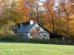 La cabane en automne.