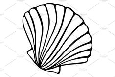 Sea shell seashell ink sketch vector by Art By Silmairel on Outline Drawings, Easy Drawings, Pencil Drawings, Sea Shells Image, Shell Drawing, Silhouette Art, Silhouette Drawings, Seashell Art, High Art