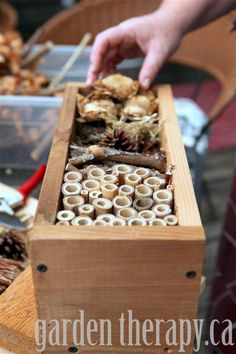Cómo hacer un hotel para insectos- how to make a bug hotel for all of the good bugs that you want hanging around your garden. Garden Bugs, Garden Insects, Diy Garden, Garden Pests, Garden Projects, Garden Ideas, Outdoor Projects, Dream Garden, Garden Inspiration